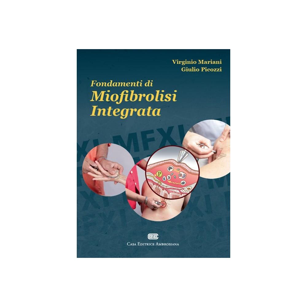 Organe und meridiane neugierig