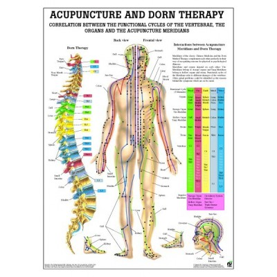 Colonna ed agopuntura