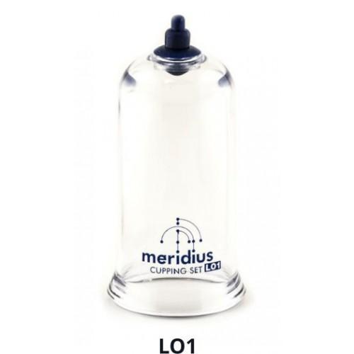 Flaschen einzelne MERIDIUS