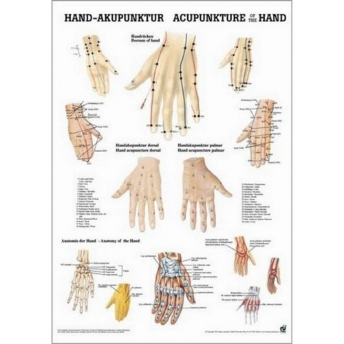 Affiche des points d'acupuncture de la main 50 x 70